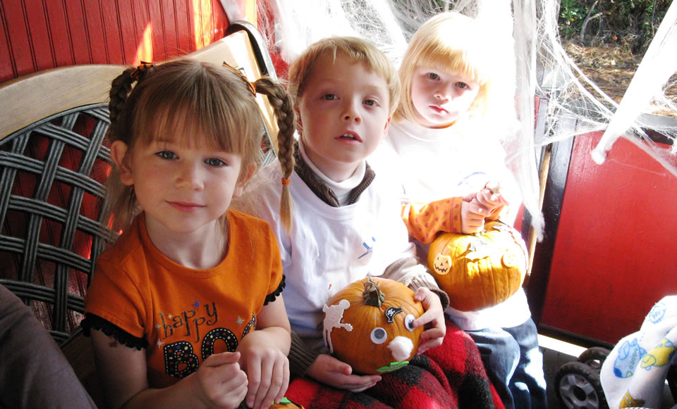Wales West Halloween 2020 Catch The Pumpkin Patch Express   Wales West RV Park & Light Railway